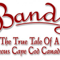 Title for book about Bandy, a Canada goose